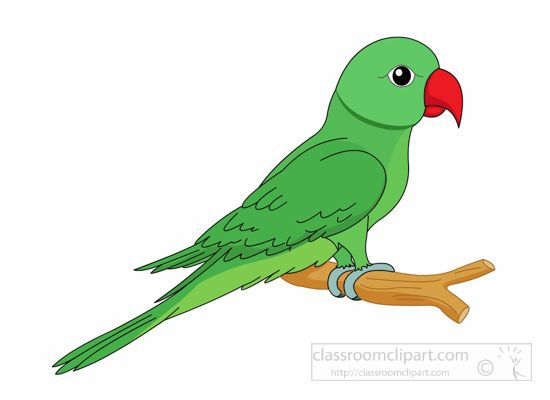 the top 5 best blogs on green parrot clip art images rh notey com parrot clip art free parrot clip art images